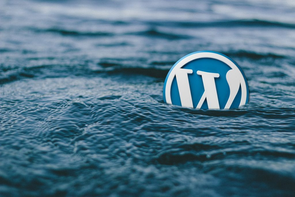 woordpress im Online-Marketing Logo im Wasser